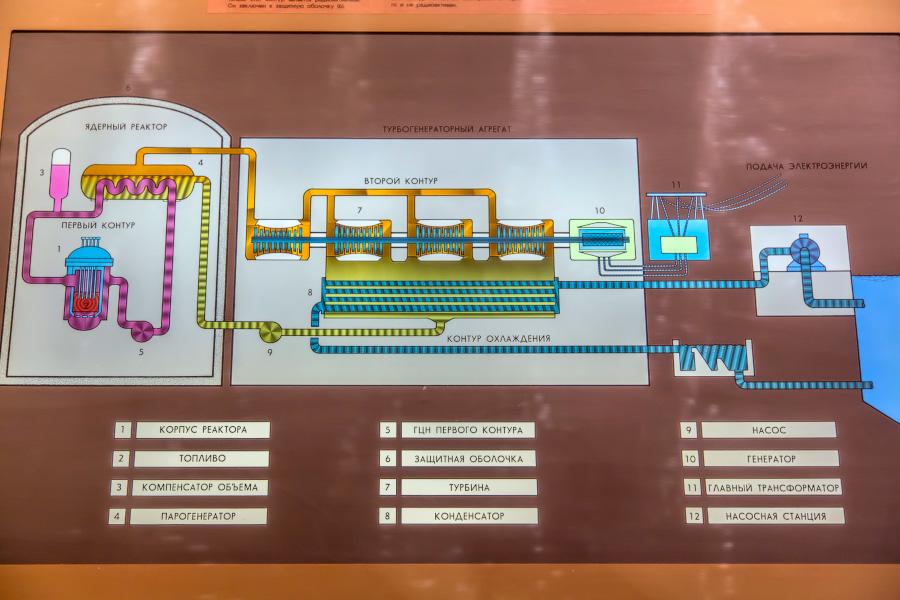 Ректор типа ВВЭР-1000 (водно-водяной энергетической реактор с номинальной электрической мощностью 1000 МВт).