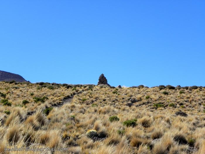 Un gran viaje a America del Sur. Боливия. Выход в космос. Вулкан Тунупа - мать Салара Выход, космос, Салара, Салар, Тунупа, вулкан, Гектор, чтобы, мирадор, Альтиплано, Гектором, вулкана, большой, здесь, самая, теперь, поднимаются, мирадору, несколько, кактусы
