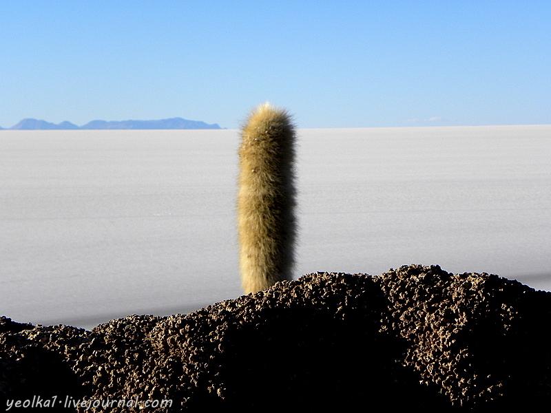 Un gran viaje a América del Sur. Боливия. Итоги и выводы. (И немного Санта Круса...)
