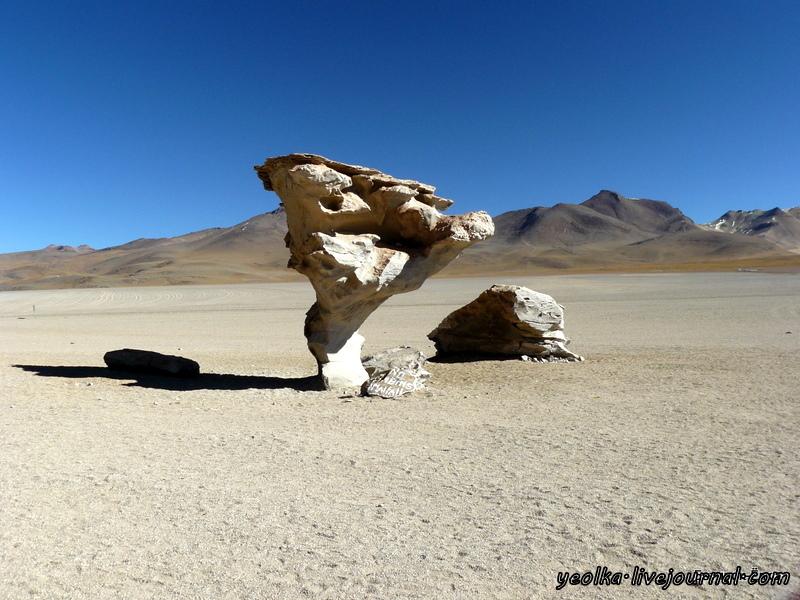 Un gran viaje a America del Sur. Боливия. Выход в космос. Обитатели Альтиплано