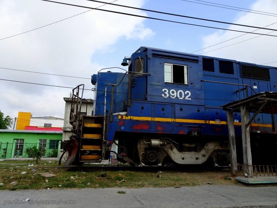 DSC03167-001.JPG