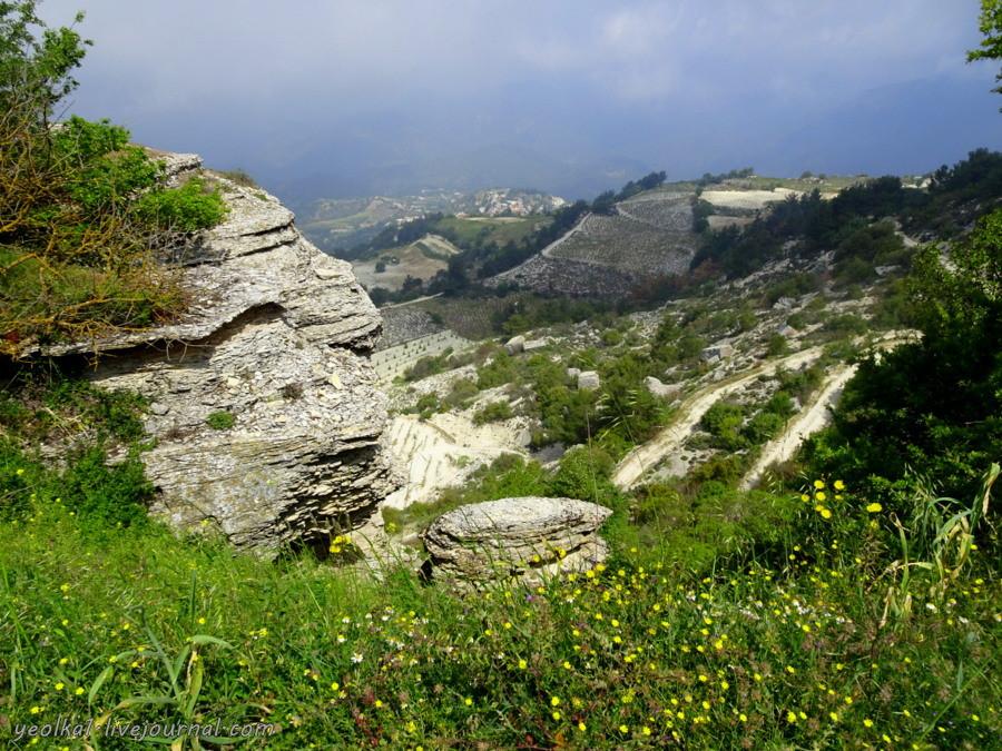 В Пафос на длинный уик-энд. Трейлы в горах Пафоса по виноградным склонам и кедровому лесу