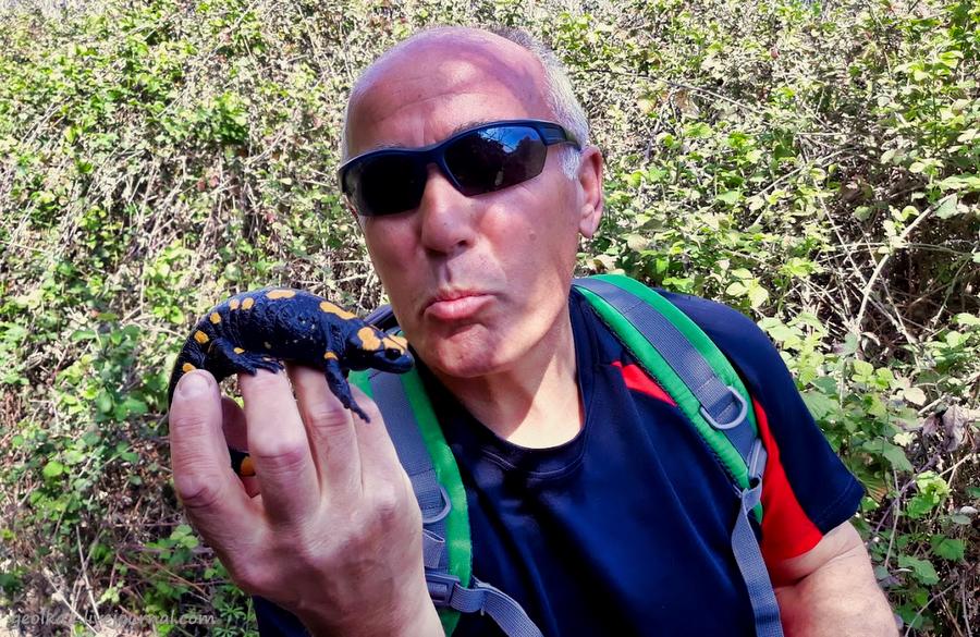 Незнакомый Израиль. Встреча с огненной саламандрой в лесу Бирия 20210213_102844_2-001.jpg