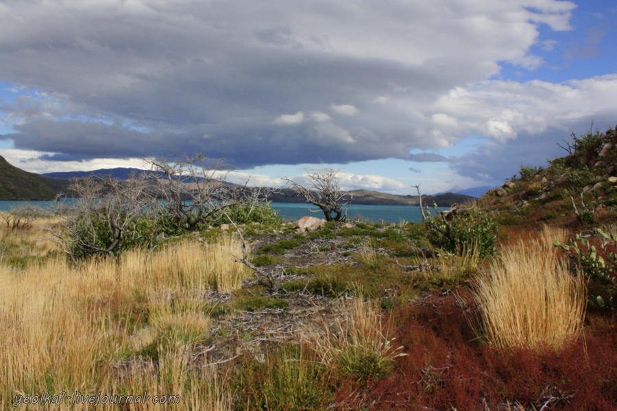 Чили - сбыча мечт! Патагония. Озеро Грей и озеро Пеоэ