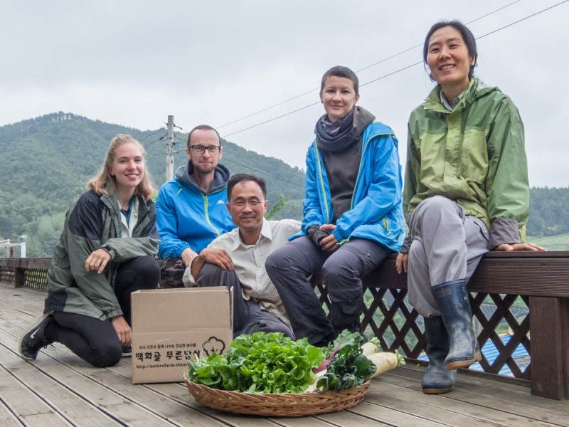 Один день волонтёров в Южной Корее: как мы пели «Голубой вагон» в школе и ели снег с фасолью.