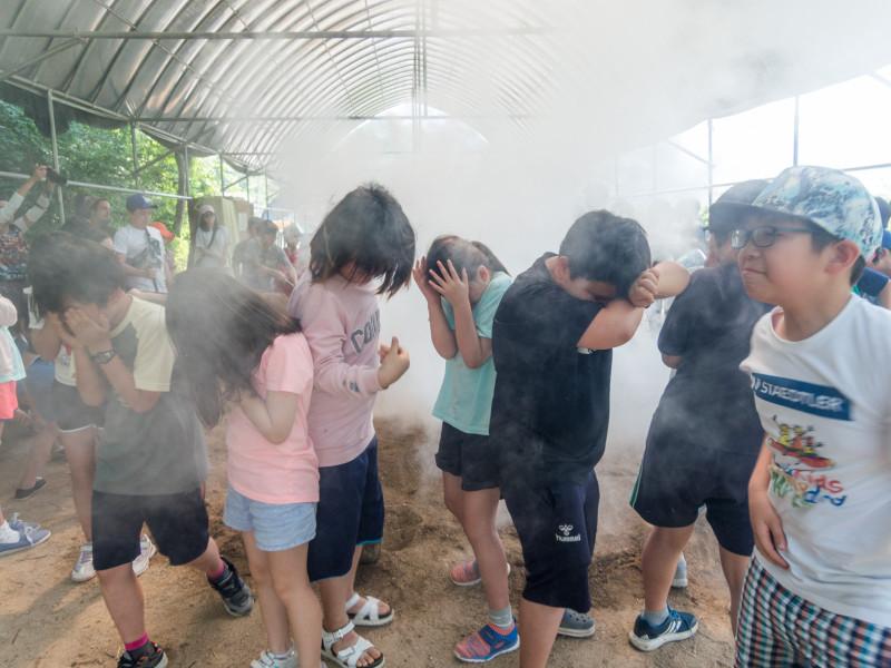 Один день волонтёров в Южной Корее: как мы развлекали детей копанием картошки и древней пароваркой.