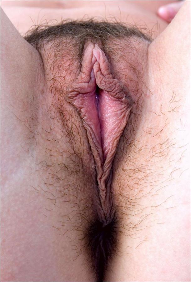 Порно спящими мокрая волосатая киска с большими губами подарок