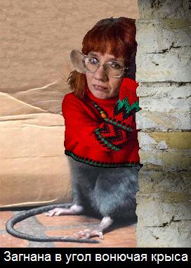 Загнана в угол вонючая крыса.png