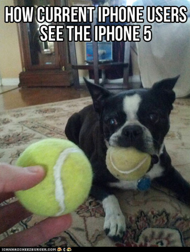 How current iPhone users see iPhone5