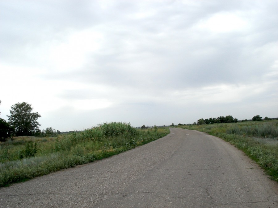 дорога1