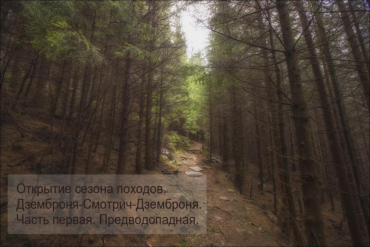 _ANT5496