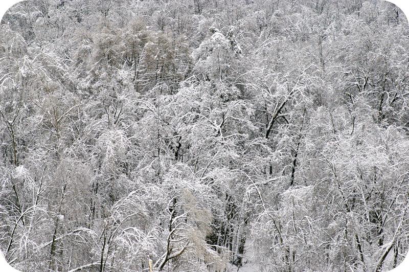 Зима-зима
