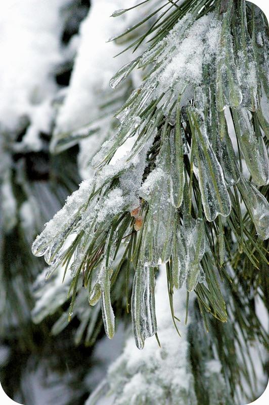 Ледяные пальцы
