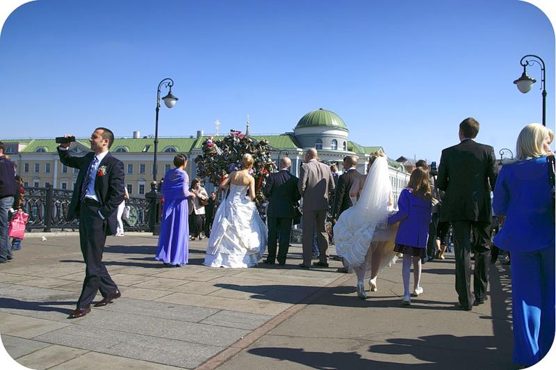 Выбор дерева или свадебный переполох