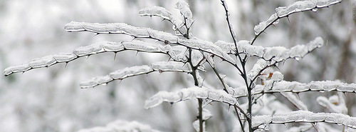 10 зимних картинок для ваших журналов