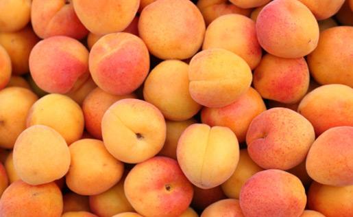 sort-abrikos1