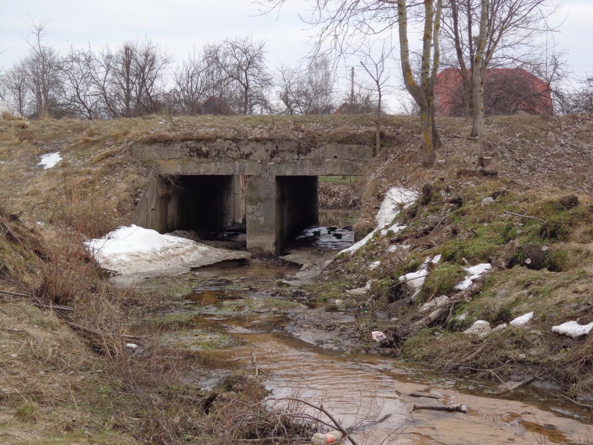 мінск-полацк мост 2