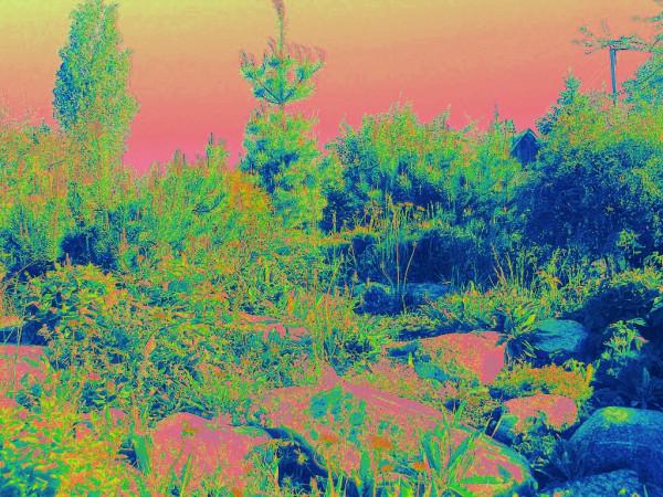 Карельский садик