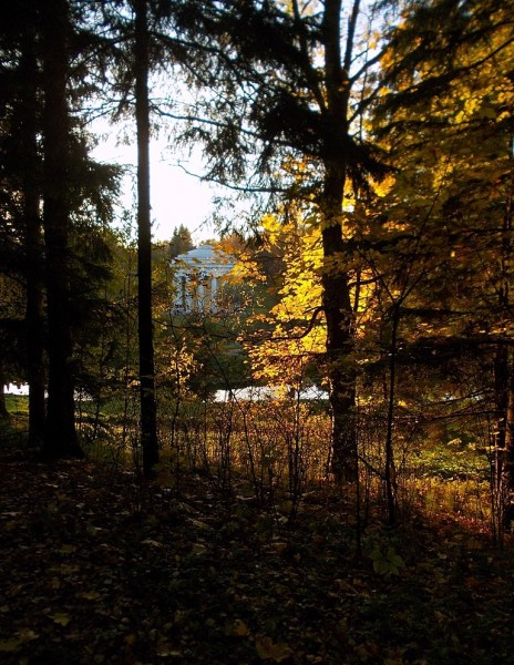 Павловский парк (The Pavlovsk Park)