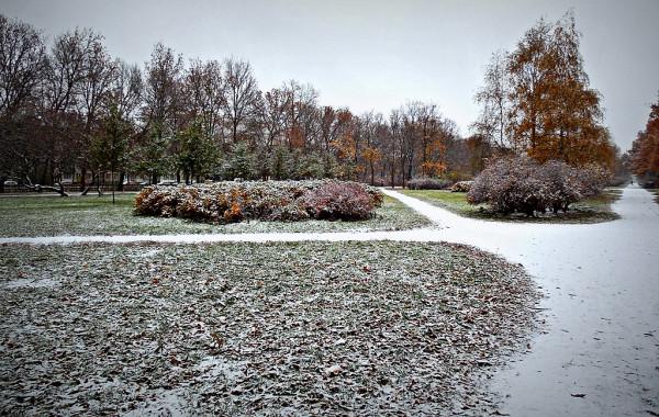 Бульвар/проспект, осень/зима