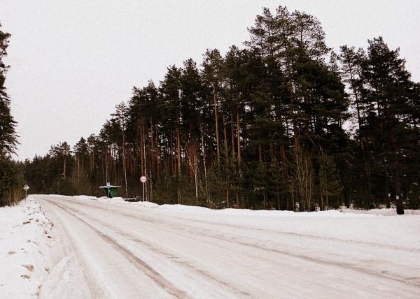 Автодорога Кузнечное-Мельниково. Выезд из посёлка Богатыри в сторону Кузнечного. Март 2018 г.