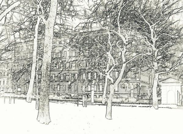 Вид из Таврического сада. Январь 2012 г.