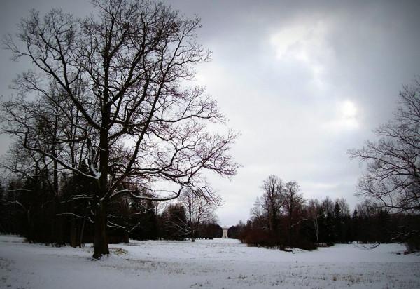 Март 2008 г.