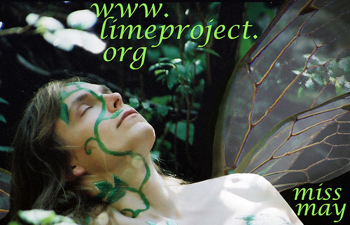 My Lime Project promo image