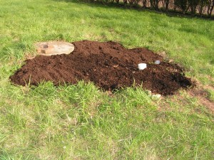 The hollow around the septic cap has been filled.