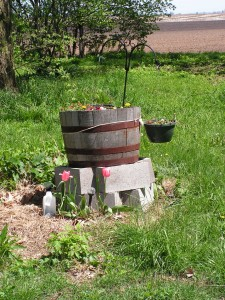 This is the barrel garden.