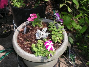 Petunias are blooming in a pot on a stand on the patio.