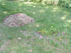 Grass pile beside Goddess Garden.