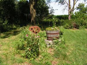 The barrel garden is blooming.