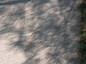 This view shows some of the crescents and bent-looking shadows.
