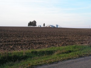 The fields around us have been harvested.