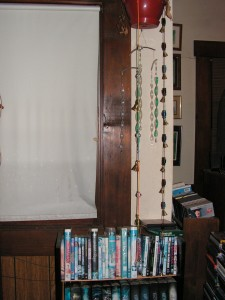 The strand hangs in its final configuration from a flowerpot in the west bay window of the living room.