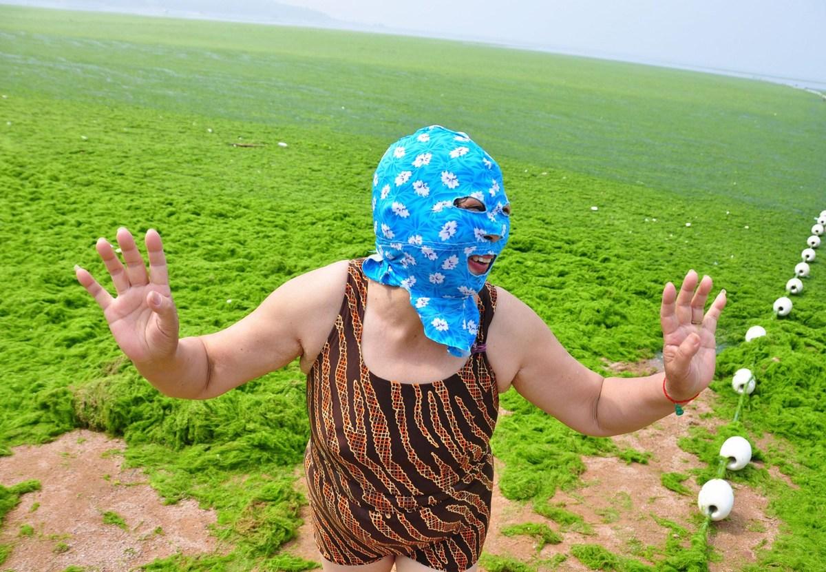 Тетки в поле 19 фотография