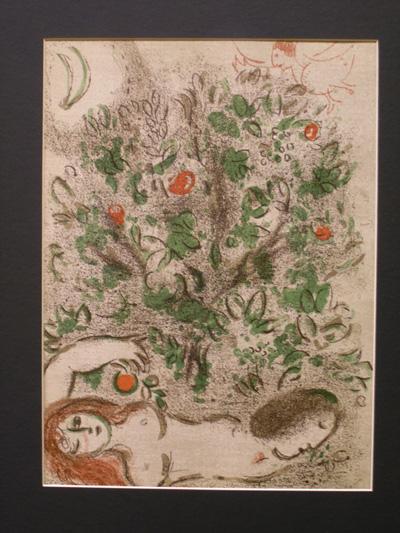 Выставка Шагала - 9