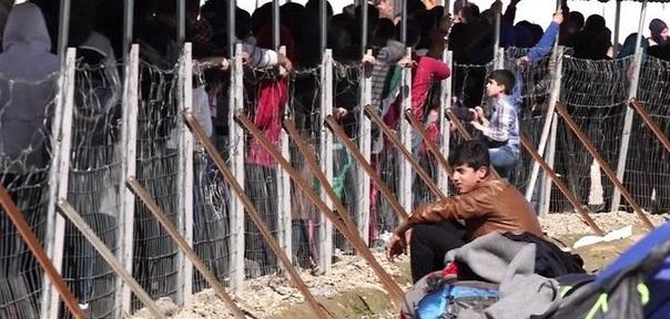 В ФРГ больше не признают паспорта беженцев с подконтрольных ИГИЛ территорий