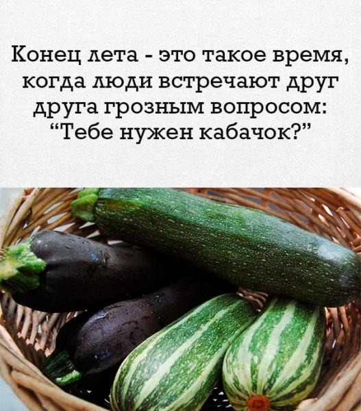 Псков. Лето