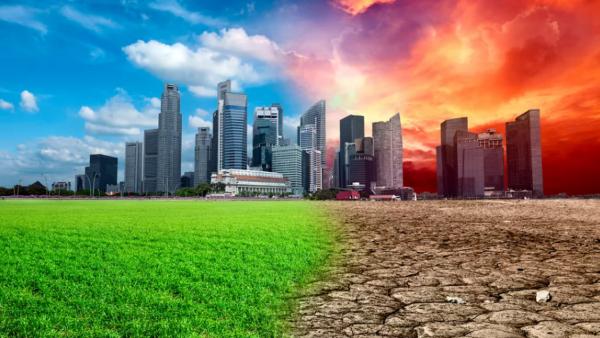 Климатическое оружие Путина: сможет ли стать «зеленая игла» – новой «иглой» для