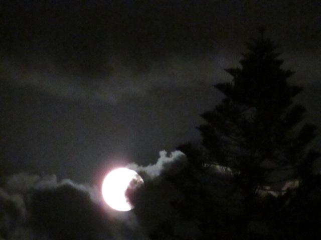 своей работа с цифровым фотоаппаратом ночная съемка луны картинки этой