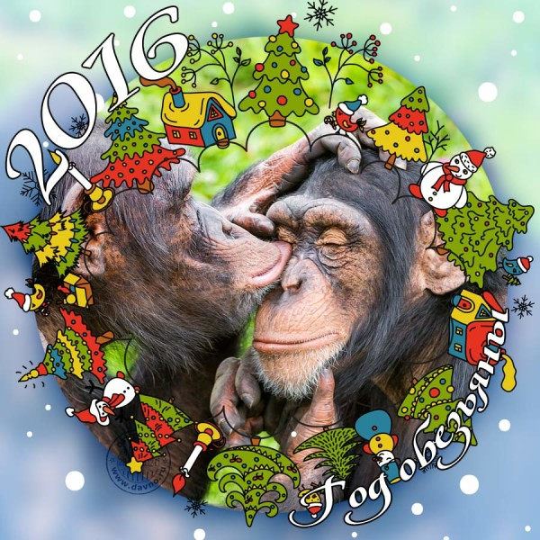 Поздравление в год 2016