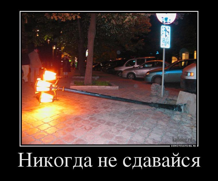 95922783_nikogda-ne-sdavajsya