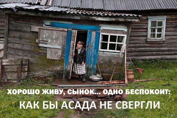 Крысы, вонь и смог: в Челябинске решили, что вывозить отходы слишком дорого, и город превратился в свалку - Цензор.НЕТ 3719