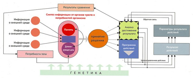 http://yuriy-pyatak.