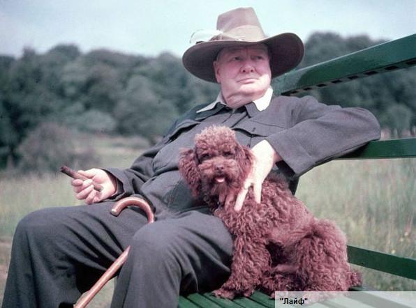 Черчилль - Лайф