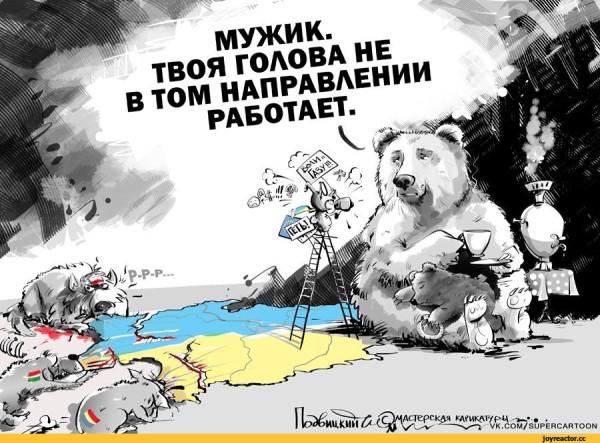 Я-Ватник-разное-Украина-карикатуры-1176882[1].jpeg