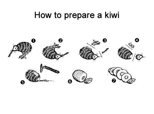 how-to-prepare-a-kiwi