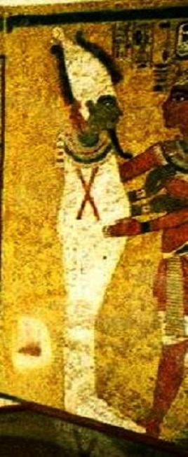 Шкура с хвостом на троне, как скинутый кокон